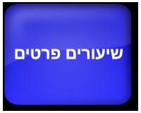 קורס אמיר אונליין
